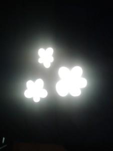02.12.2014. ESI DZīVS 027